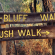 Bush-Walk business plans image